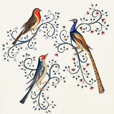 http://www.or-pigments.com/oiseaux.jpg